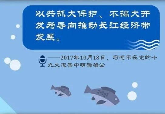 长江大保护 飞燕在行动丨飞燕遥感深度参与长江经济带生态环境保护